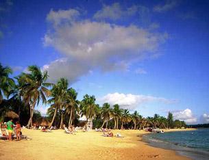 новый год в доминикане,доминикана туры на новый год,новый год 2013 в доминикане,новогодние туры 2013 В ДОМИНИКАНУ,ОТДЫХ В ДОМИНИКАНЕ 2013